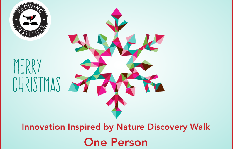 Innovation Inspired by Nature Discovery Walk - One Person